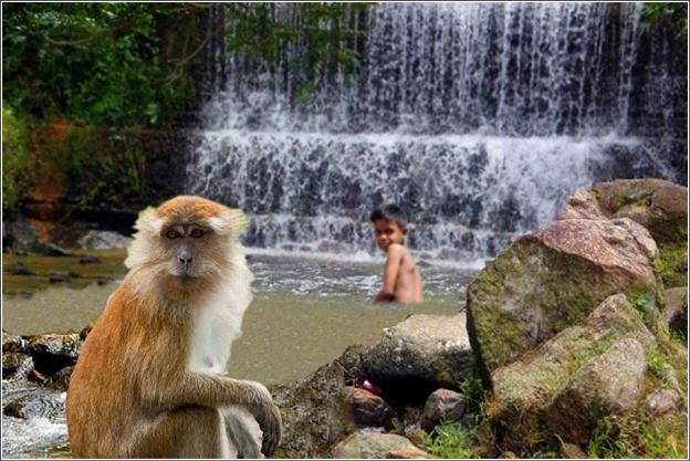 Cooling off at a waterfall at Penang Botanical Gardens